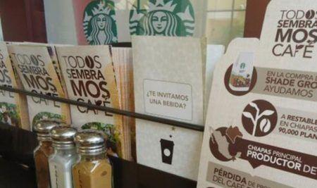 """Recorré la campaña de Starbucks """"Todos sembramos café"""" que le valió un Eikon a la Sustentabilidad (Capítulo Regional)"""